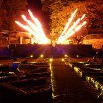 Metamophposis Frankfurt - FlameChaser